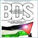 global struggle bds klein