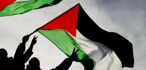 Persbericht: Zestien Palestina organisaties schrijven naar fractievoorzitters en formateur
